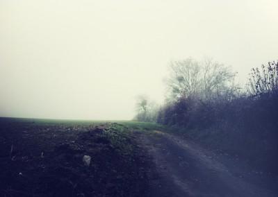 Green_1 // Green © Sophie Granger