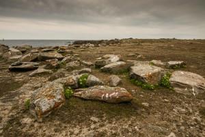 Empreintes celtiques © Sophie Granger